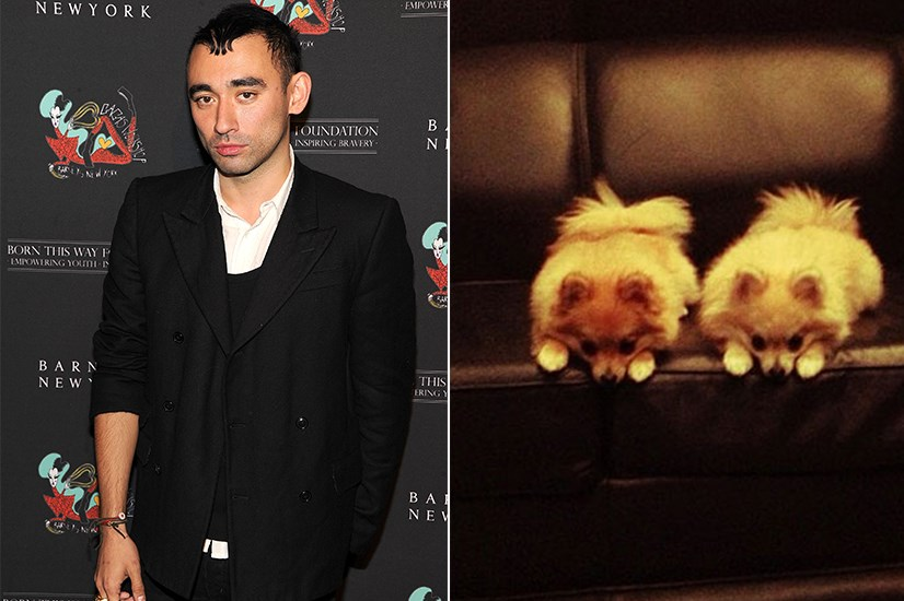 <p><strong>Tank and Bambi </strong></p> <p>When you're the darling children of a creative director as prolific as Nicola Formichetti, a career as a model is almost inevitable. Especially if you're a pair of photogenic Pomeranians. But still, Tank and Bambi's instagrams are beyond anything anyone could have predicted. With stylised shots and a clear verve for life, these two are true sensations. The fact that they don't have more followers is a crime.</p>
