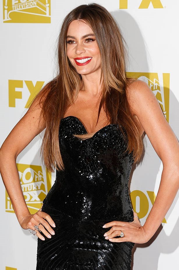 <strong>Sofia Vergara</strong><br> Could the <em>Modern Family</em> star be anymore stunning? She pulled off a memorable red carpet moment at the 2013 Golden Globes when she stepped out in $8 million worth of Lorraine Schwartz diamonds, worn with a black Michael Cinco sequin gown and super-straight strands.