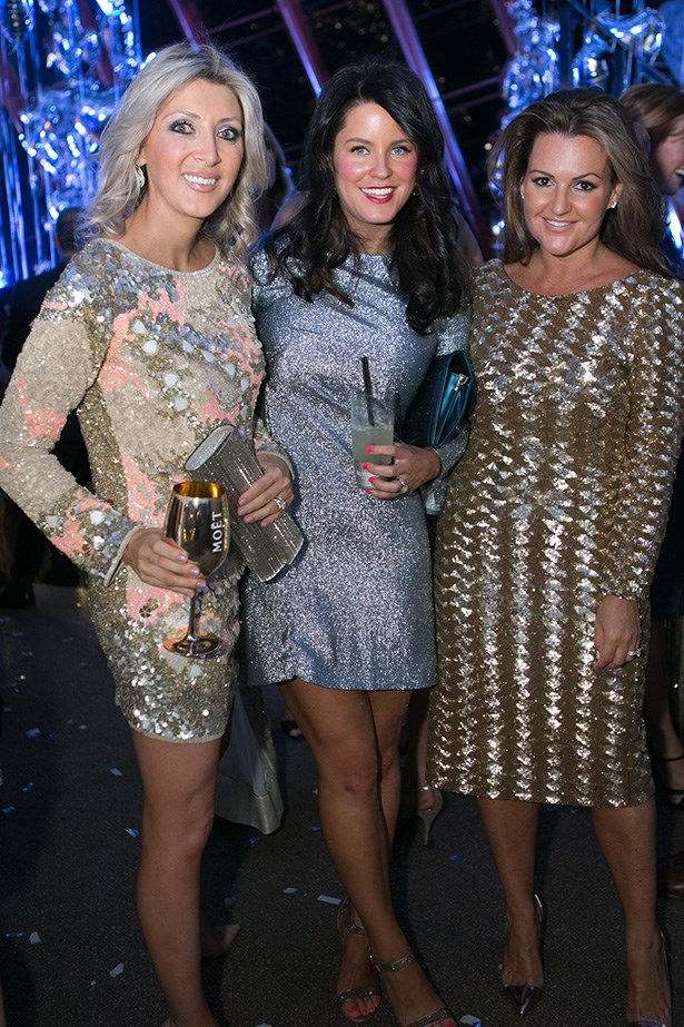 Angelique Andrews, Camille Walker and Barbara Coombes at the 2014 Silver Party