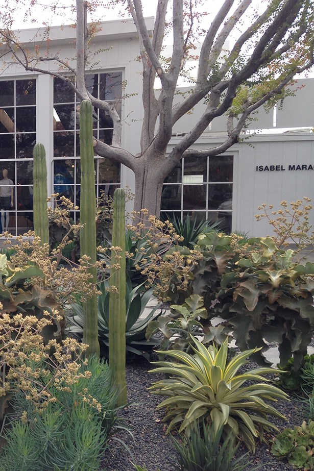 <strong><br>Melrose and Melrose Place</br></strong> Start at the corner of La Cienega  and Melrose and pull up outside your fave stores. Even if you aren't buying, visiting the stores for inspiration is a must. Our favourite is Isabel Marant... The store is like stepping into this amazing hippy chic world, from the garden that you have to walk through to enter to the use of timber and lighting. It's beyond. The girls that work in the store all look immaculate and you find yourself wanting the entire outfit.