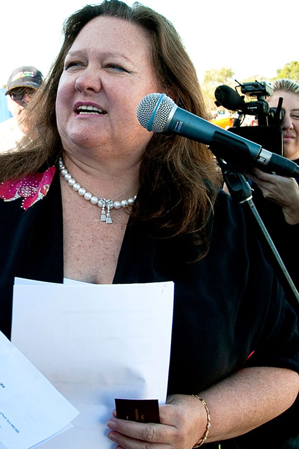 <strong>Gina Rinehart</strong><br> <br> Although Australia's richest woman, Gina Rinehart's net worth increased from $US17 billion to $US17.7 billion, the 60-year-old mining heiress slipped down ten spots this year. <br>Billionaire rank: #46