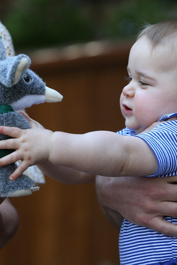 Prince George is really into Bilbies. Some cuddle time with a new pal.