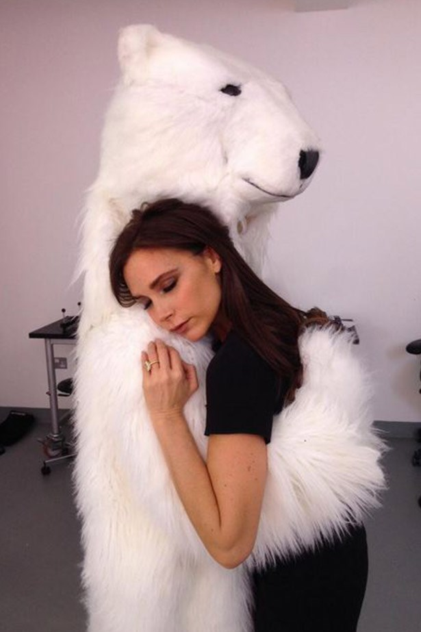 """Finished Xmas e-commerce shoot, exhausted. Good night fashion bunnies"" VB has a moment with a fluffy friend."