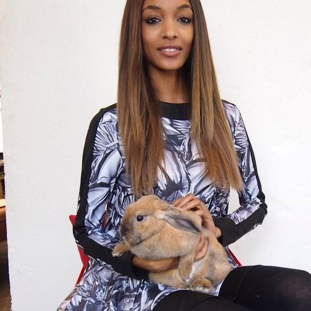 Jourdan Dunn is wasting a prime cuddling opportunity, and probably doesn't have a heart (via Instagram: @claratherabbit)