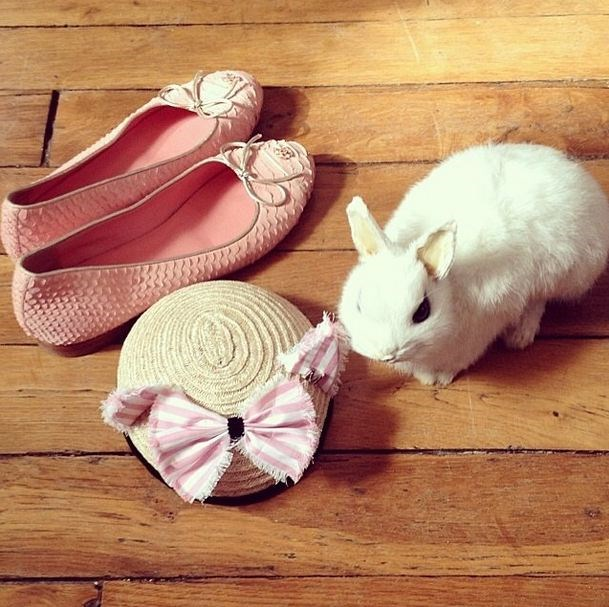 Bunny Crahay's taste in accessories in seriously on-point, natch (via Instagram: @laetitiacrahay)