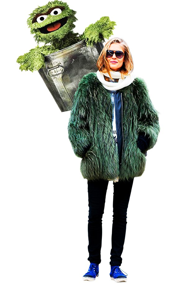 <p>Forest green fur and Oscar, of course.</p>
