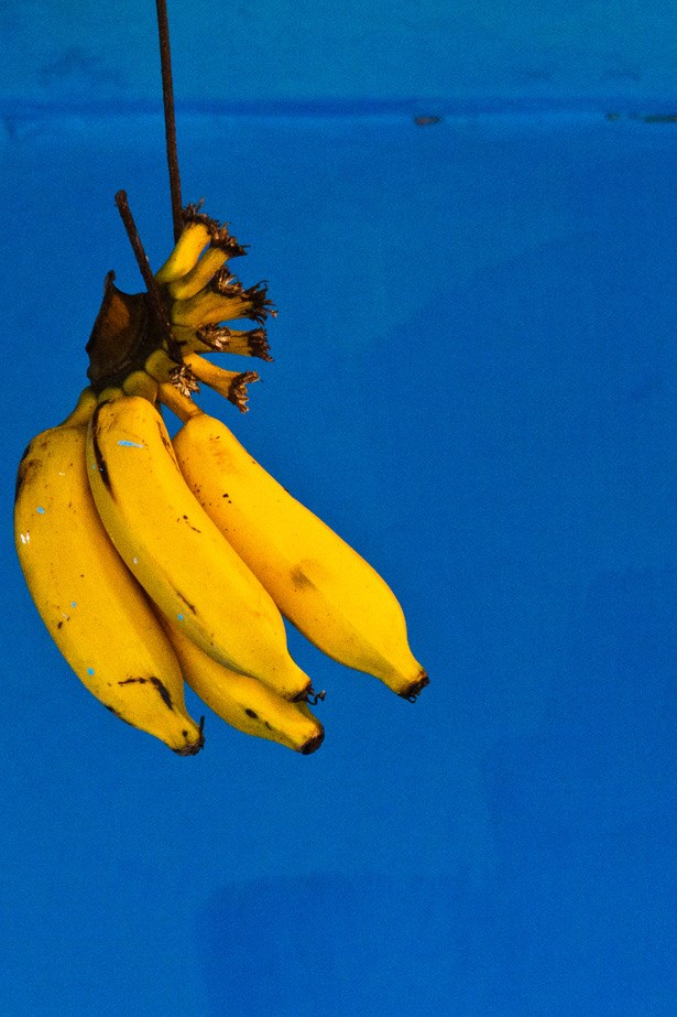 <strong>Bananas </strong><br><br> While we don't suggest you get on board any of the crazy 40-bananas-a-day diets, we do recommend at least one a day. With close to 500mg of potassium and 3.5g of dietry fibre (for a large-sized one, that is) bananas not only help to flush out toxins, control minerals and keep your body's blood sugar levels in check, they also help you feel fuller for longer. Also, contrary to what many people believe, it's best to eat bananas when they're spotty and turning brown, as the riper they are, the easy they are to digest. Unripe bananas can actually cause bloating and indigestion due to a resistant starch that occurs.