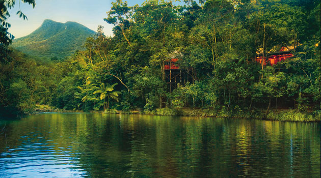 Five reasons to visit the Daintree