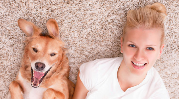 Dog owners have healthier hearts