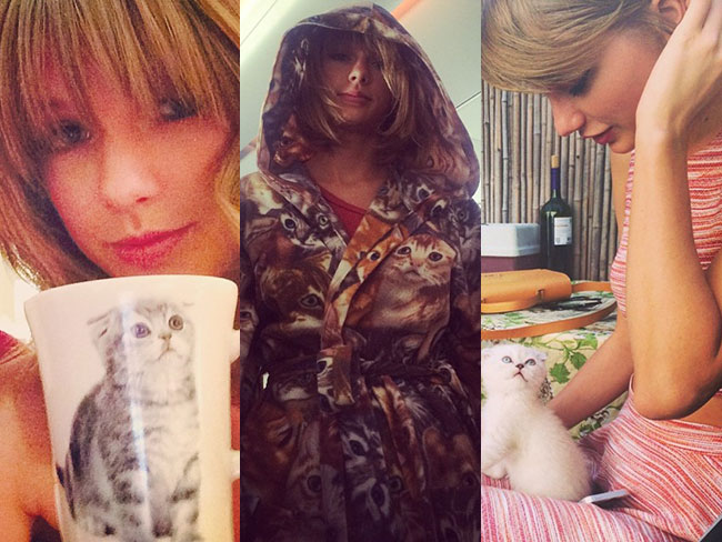Taylor Swift: our favourite cat lady