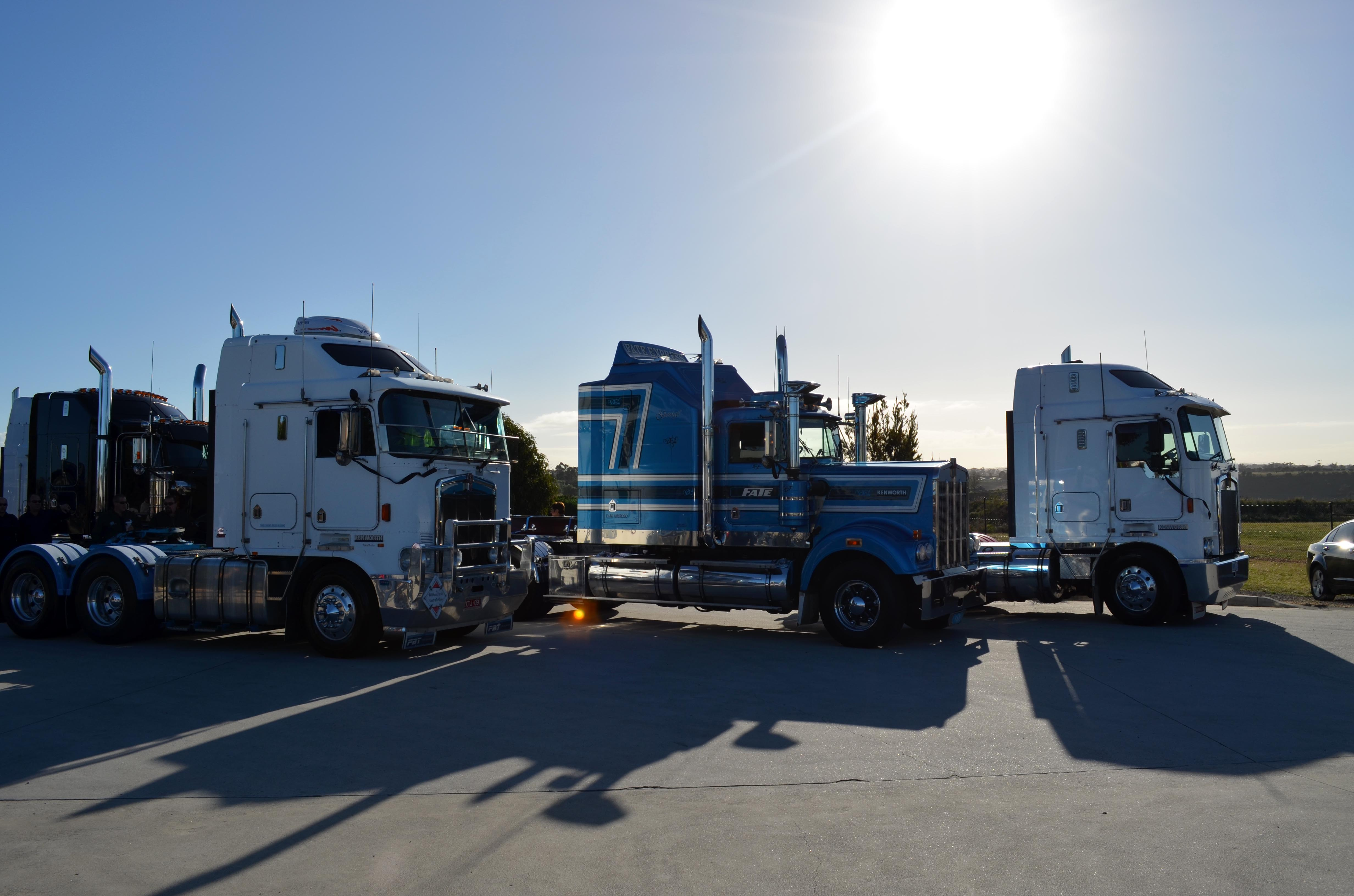 Httpsownerdriverindustry news1312truck and dogs 30054g fandeluxe Gallery