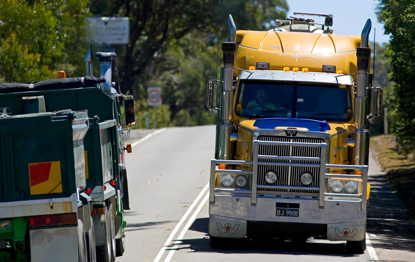 Httpsownerdriverindustry news1312truck and dogs 31821g fandeluxe Gallery