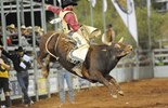 The Mt Isa Rodeo