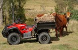 The TGB Blade 550AR ATV provides versatility with a longer wheelbase for greater stability making it a real all-rounder