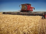 The new Case IH 30-series combine harvesters are specially designed to offer operators a comfortable working environment