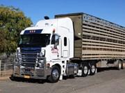 Used Truck: Joel Gniel's Freightliner Argosy
