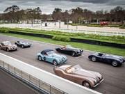 Classic Jaguars in 2014 Mille Miglia