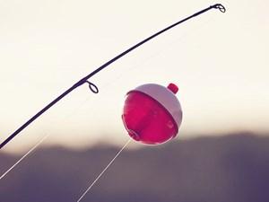 The new fishing season opens 1 October.