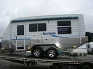 Sunland Blue Heeler S